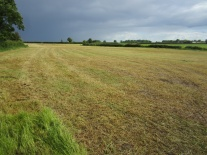 Approximately 23 Acres Adjacent To 23 Carlane Road, Toome